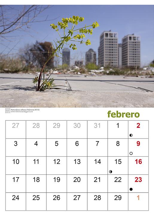 Fotografía de una página del calendario con la fotografía de una planta creciendo en una acera con un perfil urbano de fondo