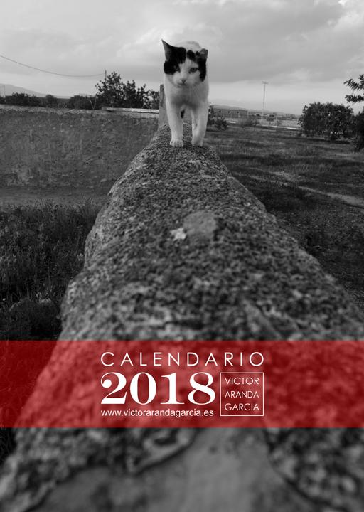 Portada del calendario con la fotografía de un gato precioso andando sobre un muro en medio del campo