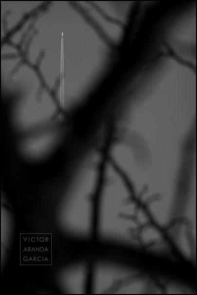 Fotografía en blanco y negro
