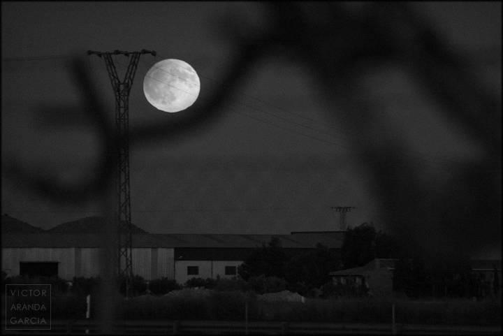 luna llena entre todo tipo de cosas
