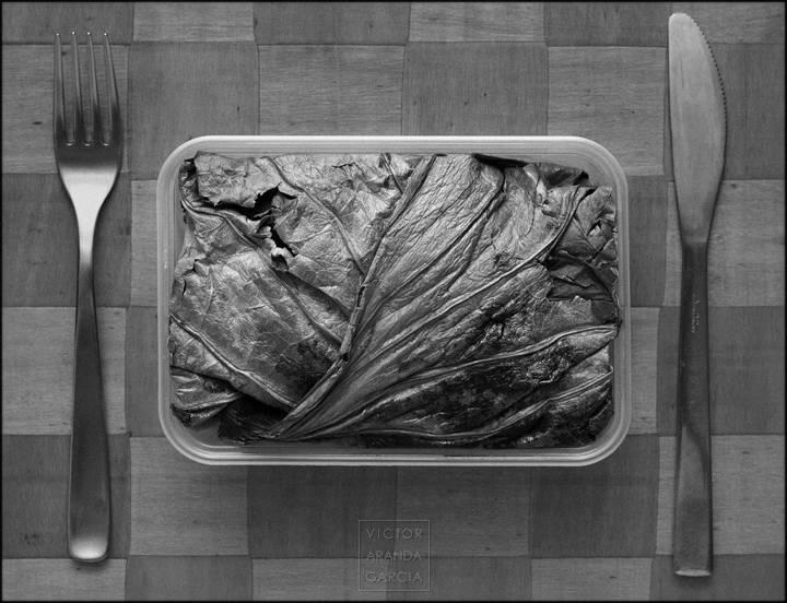 Fotografía de una hoja en una comida
