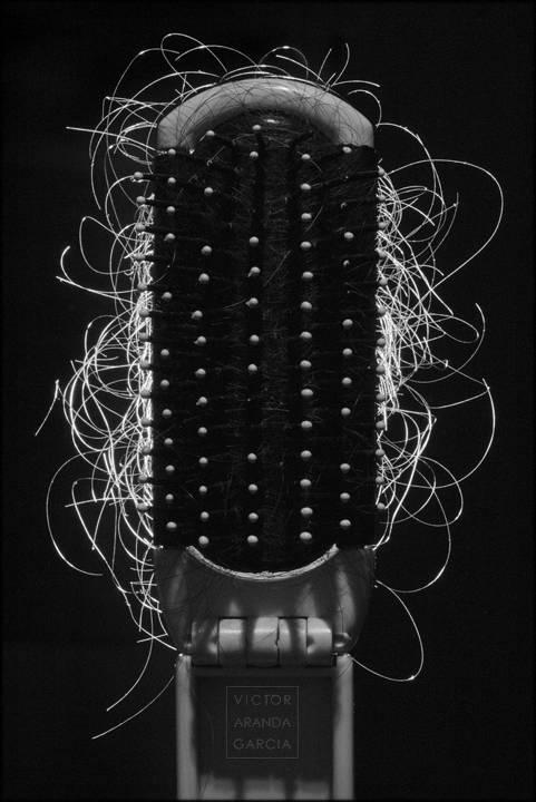 Fotografía de un cepillo a contraluz