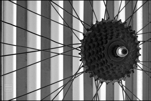 Fotografía de la rueda de una bicicleta