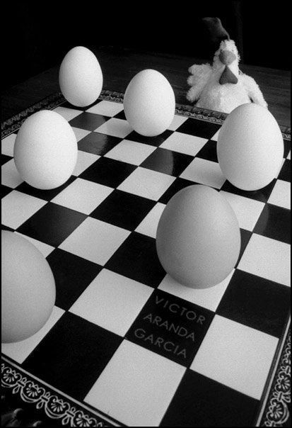 Fotografía de huevos de gallina sobre un tablero de ajedrez