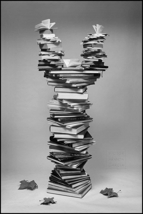 Fotografía de una columna de libros que recuerda a un árbol