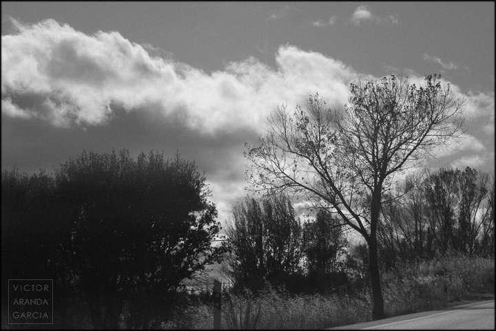 Fotografía de naturaleza al borde de una carretera con nubes de fondo
