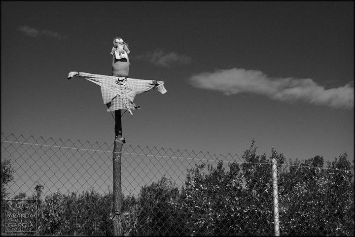 Fotografía de un espantapájaros que parece un Cristo crucificado