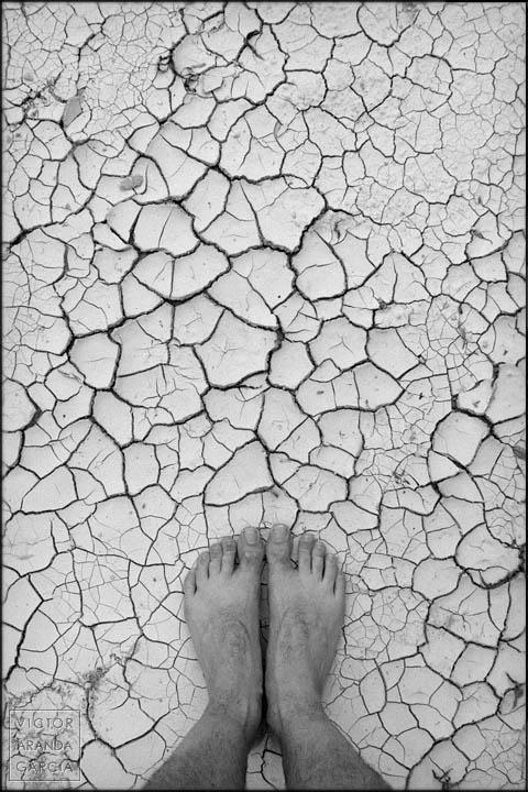 pies,serie,suelo,seco