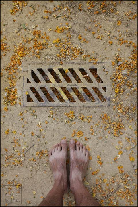 pies,suelo,petalos,amarillo,alcantarilla